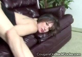 lustful brunette hair cougar stephanie wylde